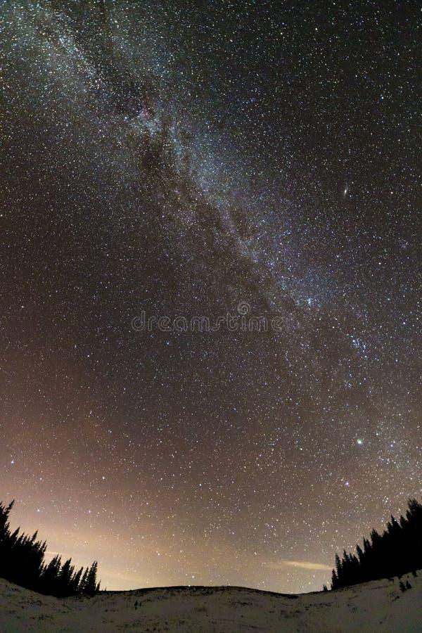 冬天山夜风景全景 在深蓝满天星斗的天空的银河明亮的星座在黑暗的云杉的松树 免版税图库摄影