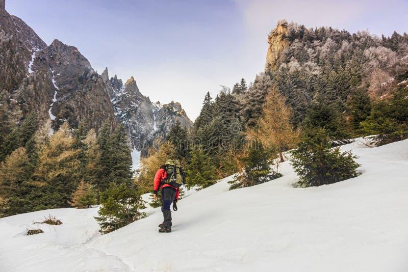 冬天山的远足者 有迁徙在喀尔巴阡山脉的背包的人 免版税库存图片