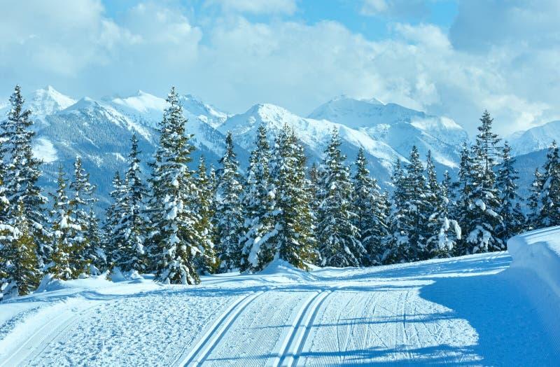 冬天山风景和滑雪倾斜(Papageno bahn,奥地利) 库存照片