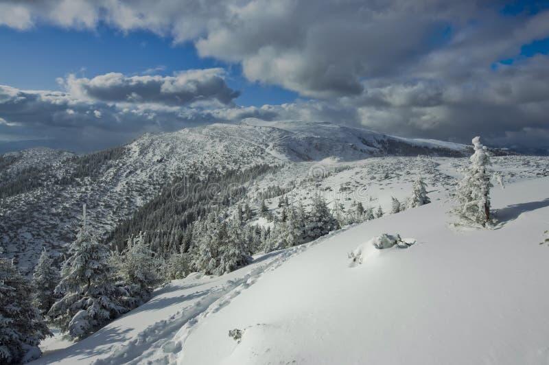 冬天山风景 图库摄影