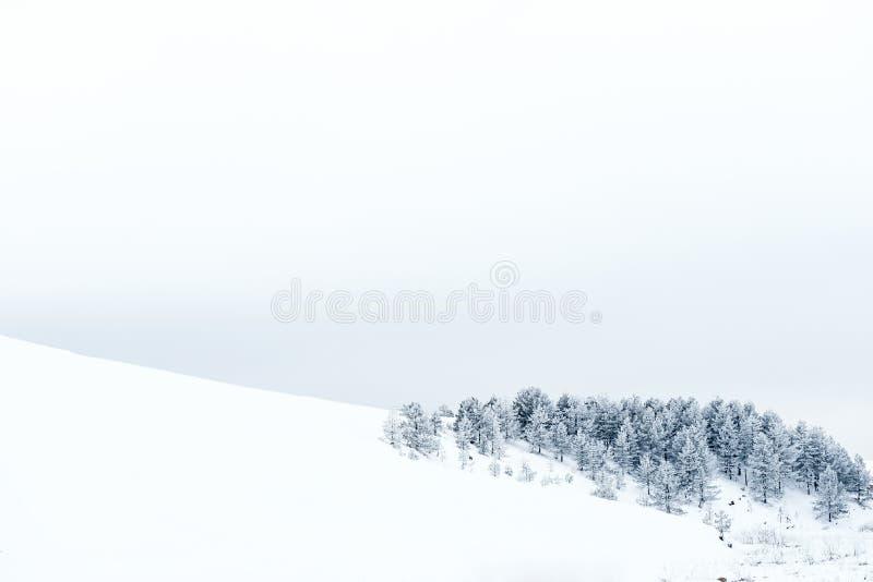 冬天山 免版税库存照片