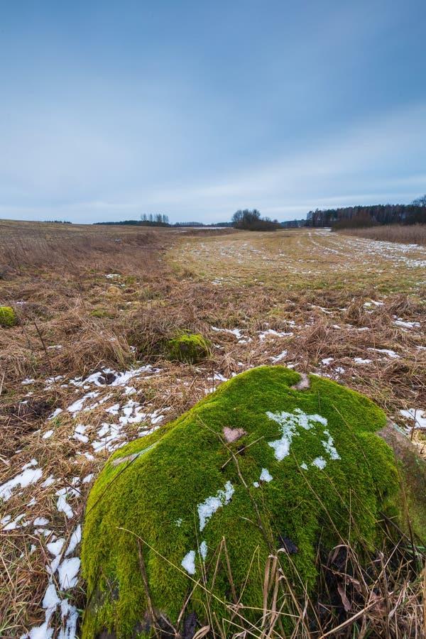 冬天或冰砾石头早春天风景在领域的 库存照片