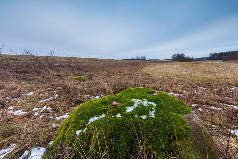 冬天或冰砾石头早春天风景在领域的 库存图片
