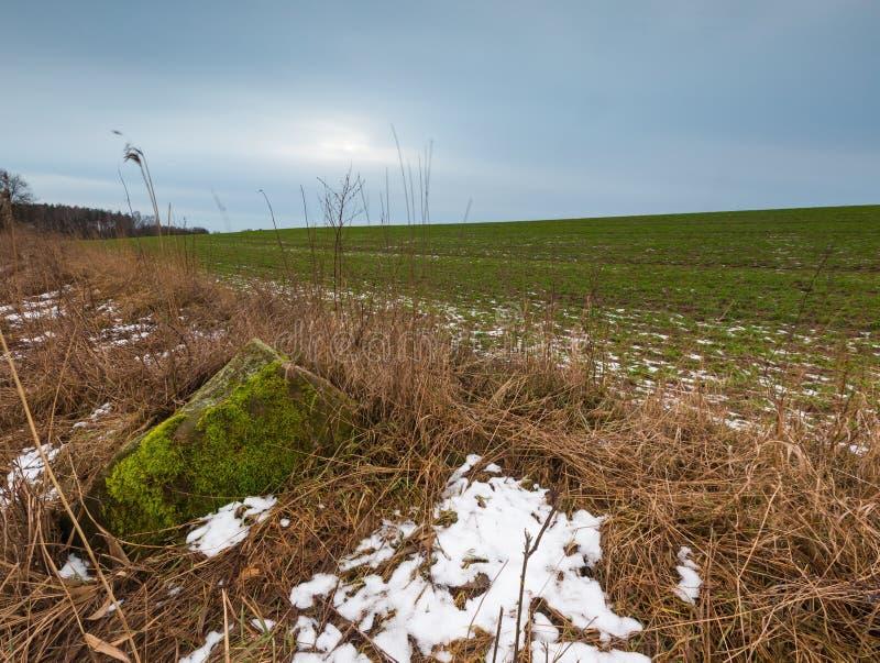 冬天或冰砾石头早春天风景在领域的 免版税库存照片