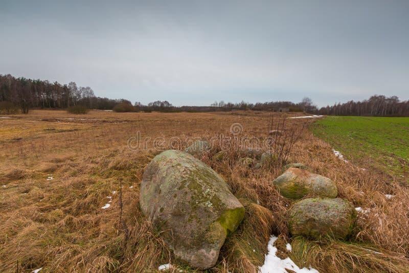 冬天或冰砾石头早春天风景在领域的 免版税库存图片