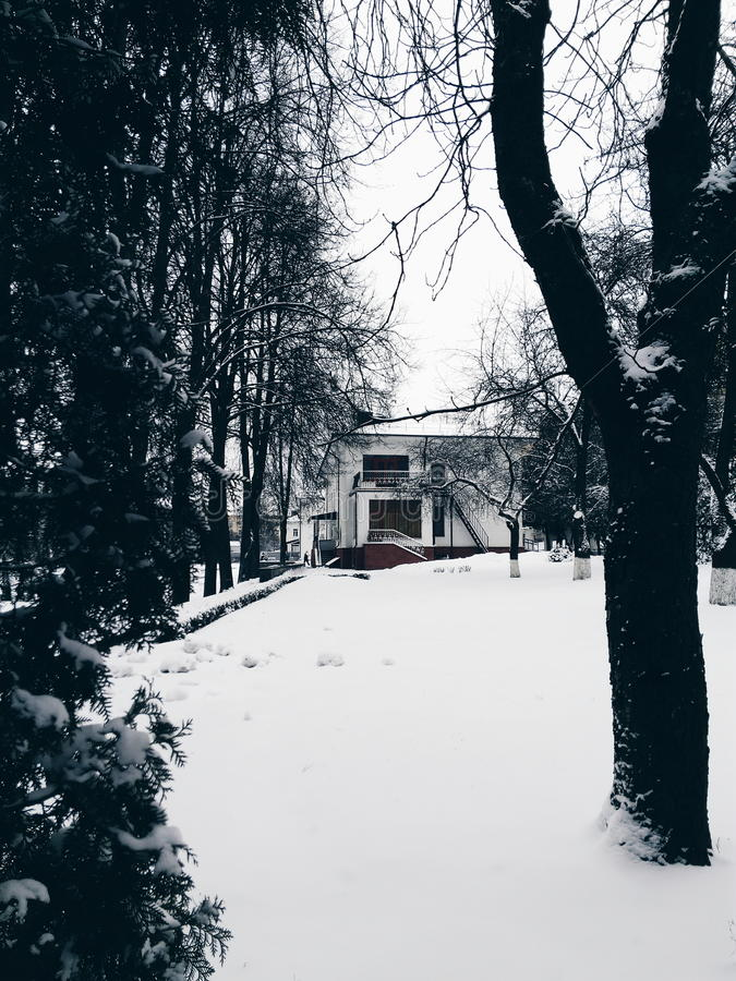 冬天房子 免版税库存照片