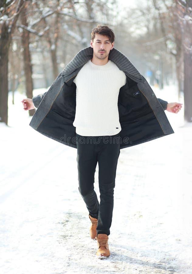 冬天散步 免版税库存图片