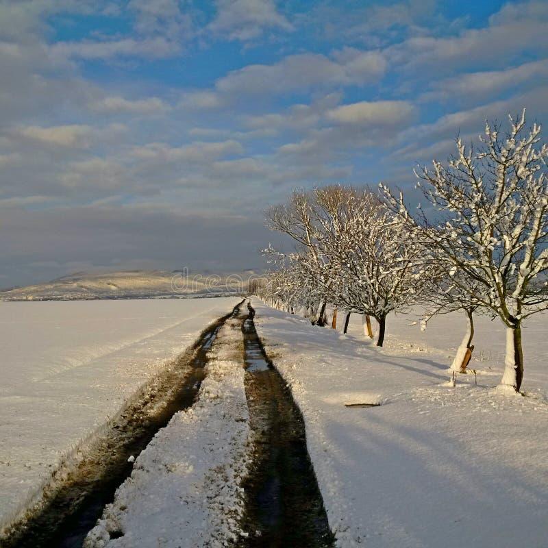 冬天旅途,在两个世界之间 免版税库存照片