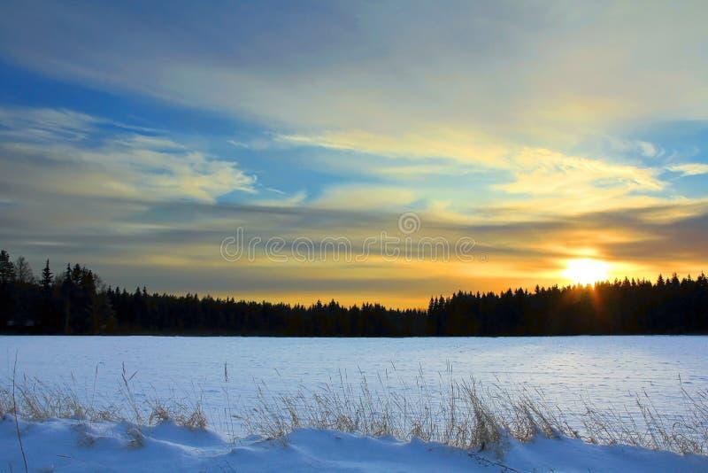 冬天日落在芬兰 免版税库存图片
