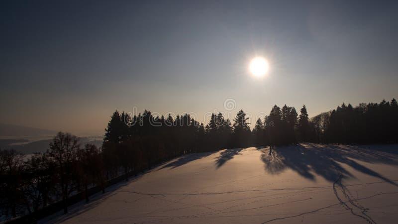 冬天日落巫婆树和雪,空中照片 免版税库存图片
