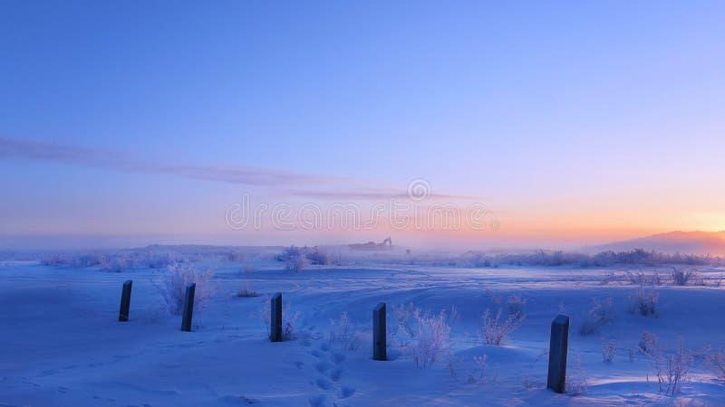 冬天早晨 库存照片