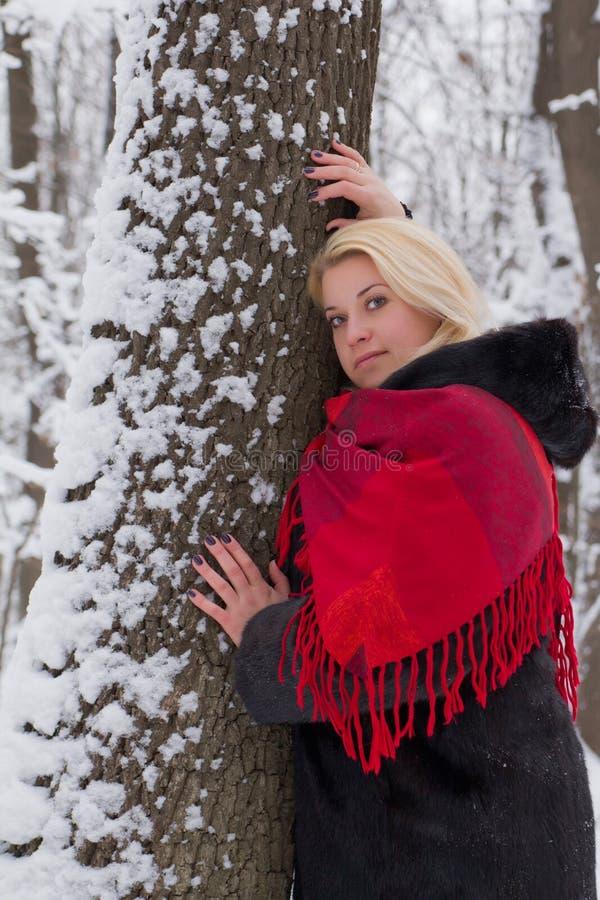 冬天木头的女孩。 库存照片