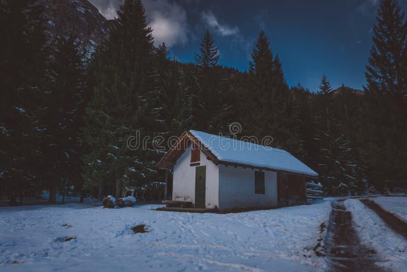 冬天树与山瑞士山中的牧人小屋和路的夜场面 库存图片