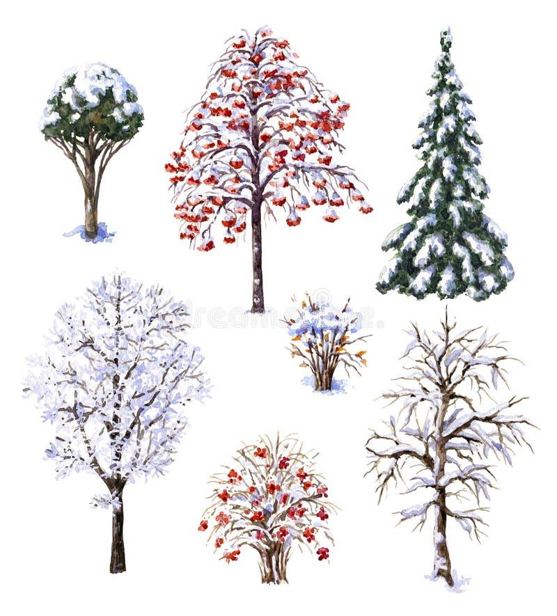 冬天树和灌木 库存例证