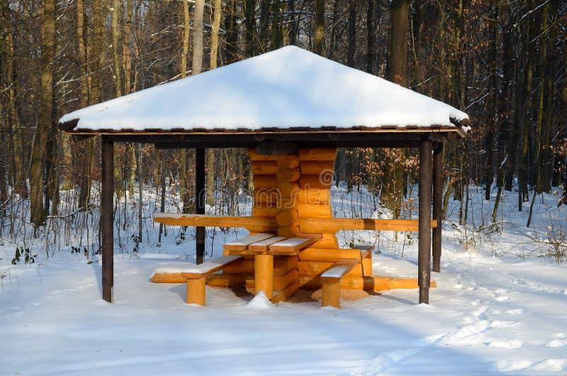 冬天森林在波兰 免版税库存图片