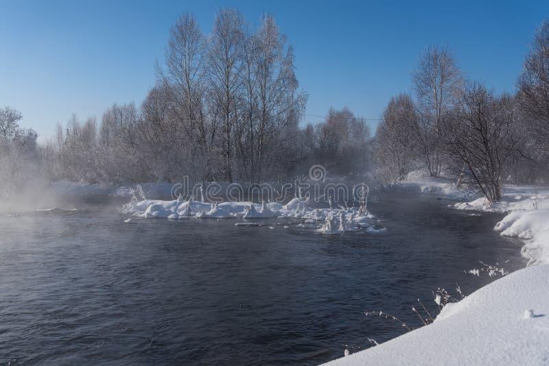 冬天森林河雪水 库存图片