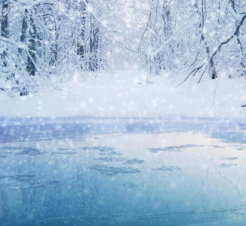 冬天森林湖 免版税库存照片