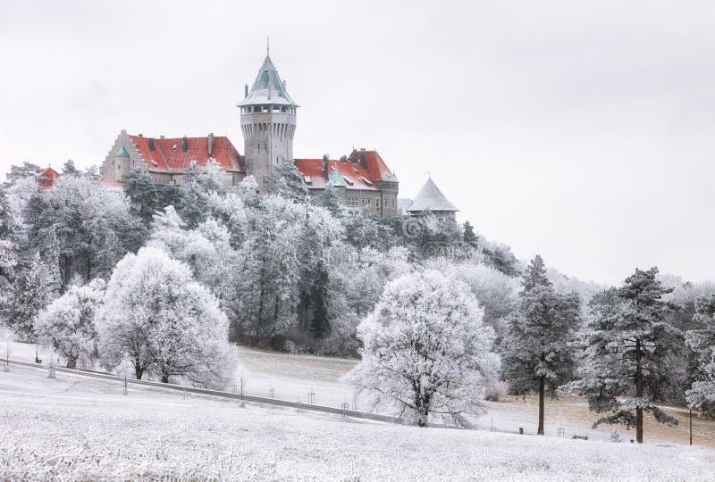 冬天森林覆盖与Smolenice城堡,斯洛伐克的风景 库存图片
