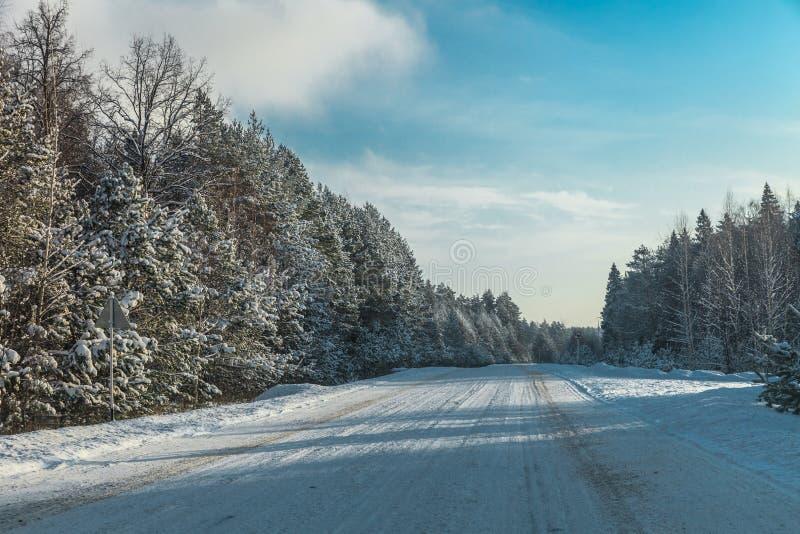 冬天森林高速公路弗罗斯特风景  库存图片