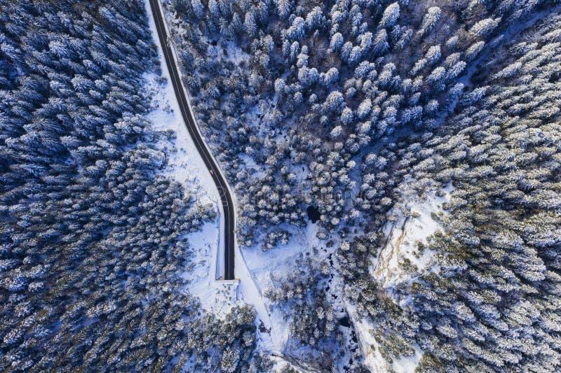 冬天森林,隧道入口从上面 免版税库存照片