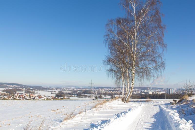 冬天横向在巴伐利亚 免版税库存照片