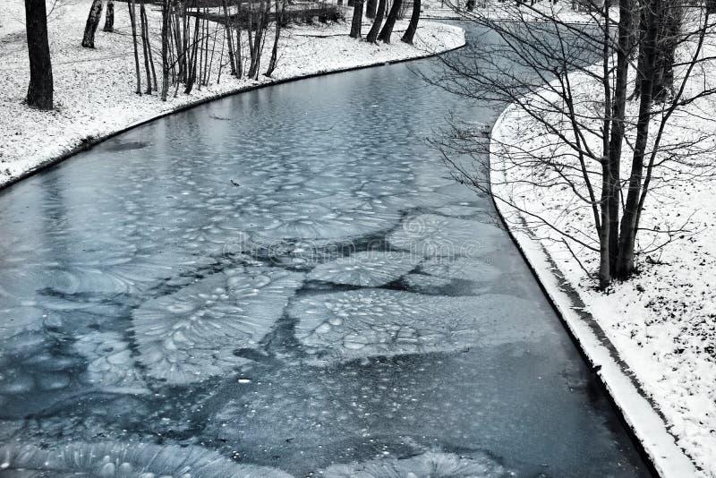 冬天河公园冰雪户外树自然天 库存图片