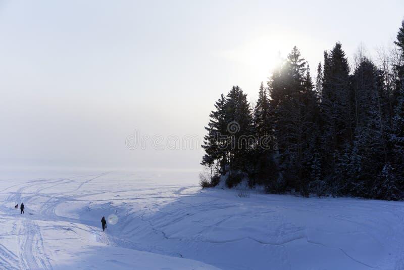 冬天河的嘴 库存照片