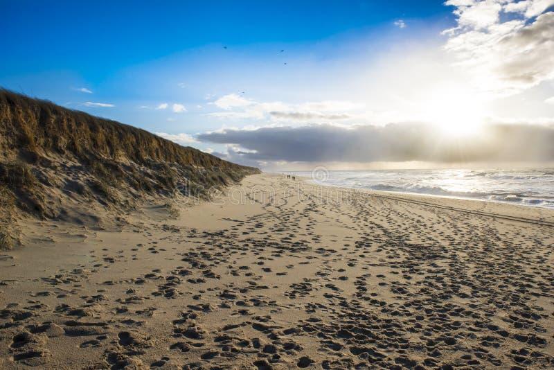 冬天海滩叙尔特岛,德国 免版税库存图片