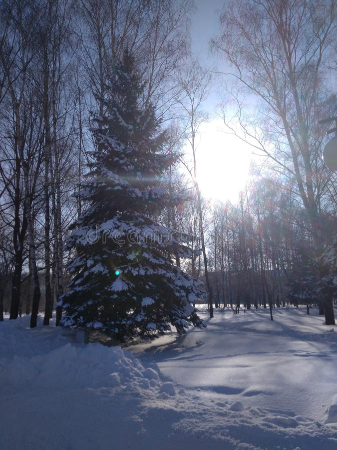 冬天清楚的晴朗的冷淡的天在城市 库存照片