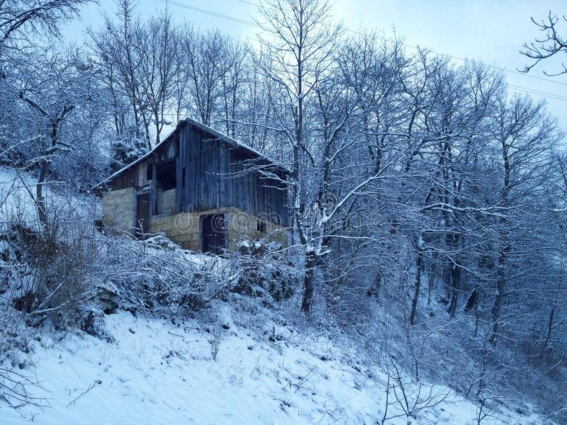 冬天环境 免版税库存照片
