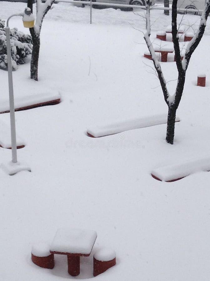 冬天的颜色 免版税库存图片