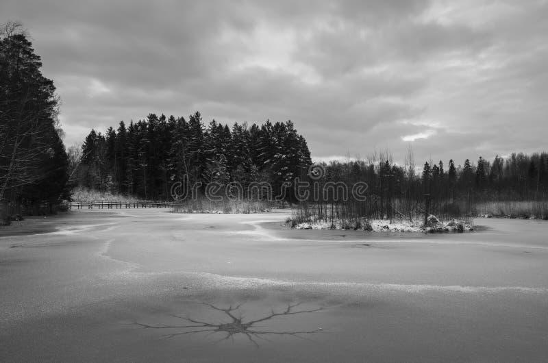 冬天自然和风景在瑞典斯堪的那维亚欧洲 免版税库存图片