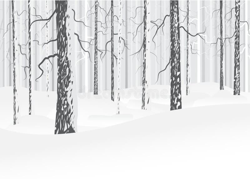 冬天落叶林 向量例证