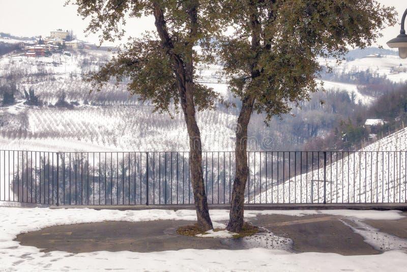 冬天葡萄园多雪的大阳台 颜色女儿图象母亲二 库存照片