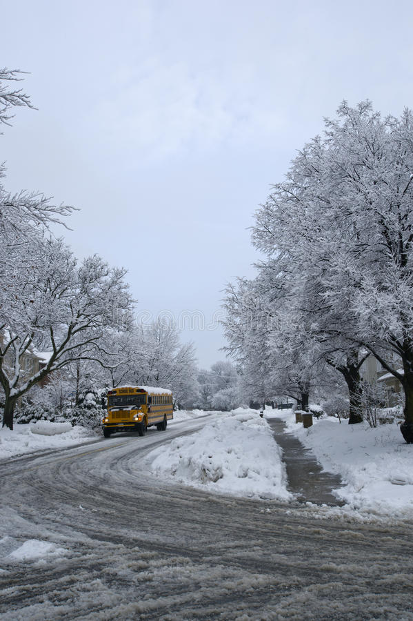 Download 冬天路 库存照片. 图片 包括有 地点, 远程, ,并且, 小径, 本质, 唯一, 横向, 结构树, 公共汽车 - 30337826