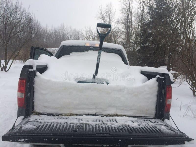 冬天雪 库存图片