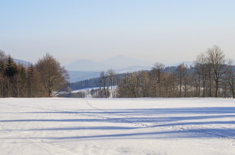 冬天领域和森林乡下积雪的全景风景与树,小山在luzicke hory山 免版税库存图片