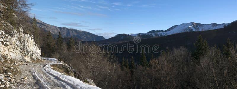 冬天风景全景 免版税图库摄影