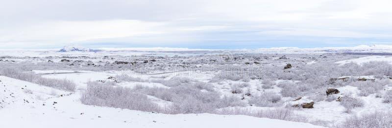 冬天风景冰岛全景 库存图片