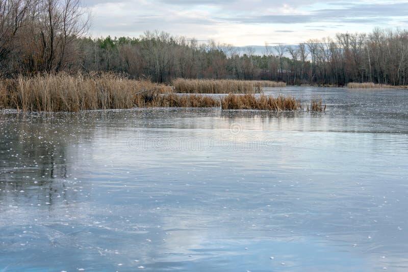 冬天风景冰川覆盖的湖和树 美丽的多云天空 免版税库存照片