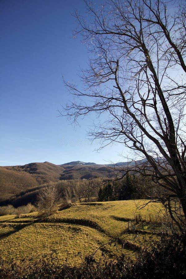冬天风景在一个晴天利古里亚亚平宁山脉 免版税图库摄影