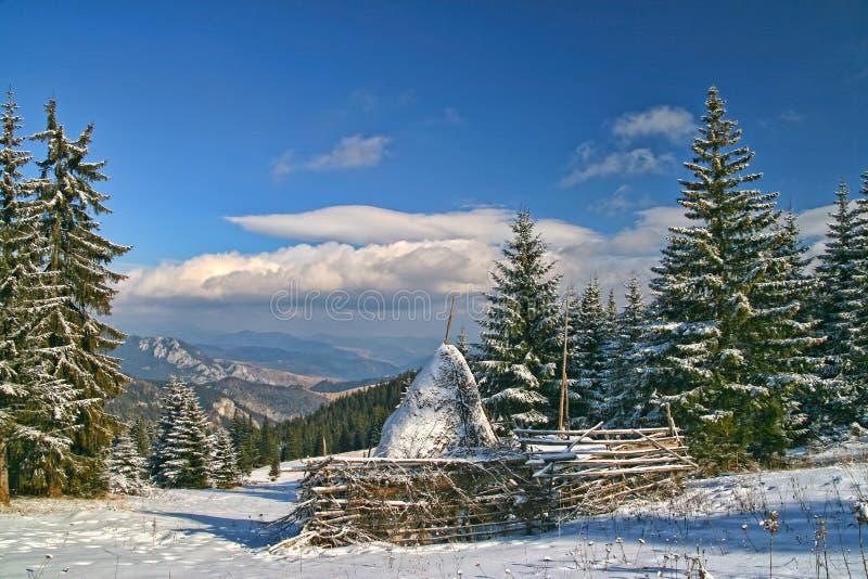 冬天风景在开头森林,干草堆里在中心 库存照片