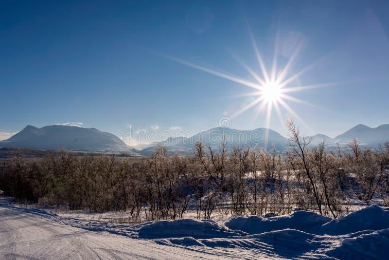 冬天风景在拉普兰,阿比斯库国家公园国家公园,阿比斯库国家公园,瑞典人 免版税库存图片