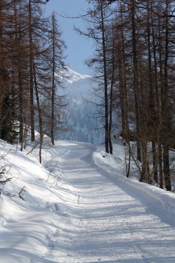冬天风景在瓦莱达奥斯塔 免版税库存图片