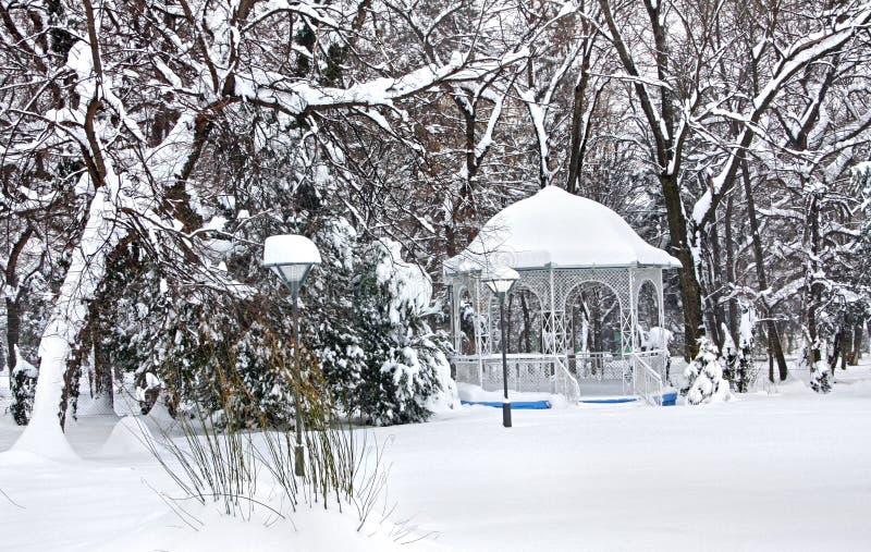 冬天风景在老公园在泰梅林,塞尔维亚 免版税库存图片