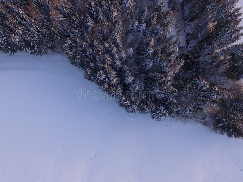 冬天风景天线 库存照片