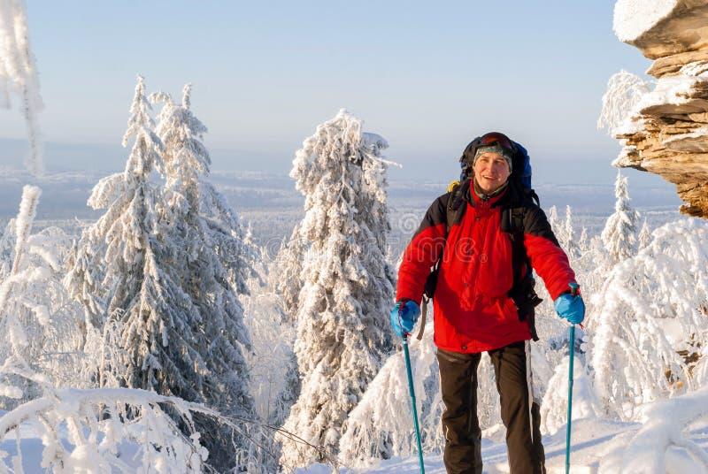 冬天风景的旅客 库存图片
