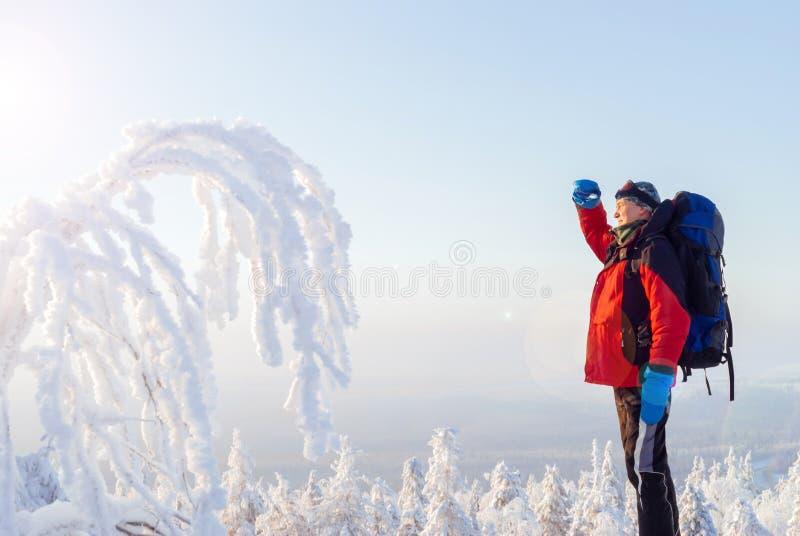 冬天风景的旅客 免版税图库摄影