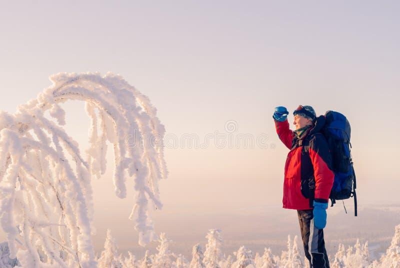 冬天风景的旅客 免版税库存照片