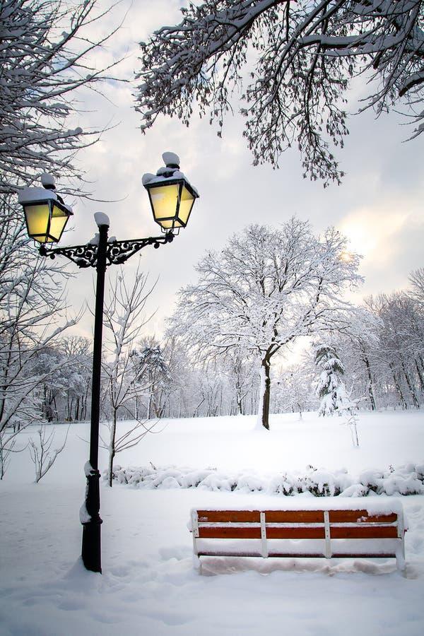 冬天风景英尺长度在有树的公园有很多雪 图库摄影